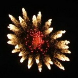 125_Double Fireflower with Red Pistil_cylinder.jpg